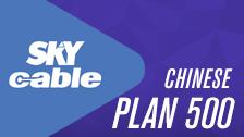 Plans & Bundles